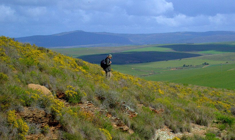 Visitor & Research Centre in renosterveld