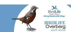 Birdlife Overberg