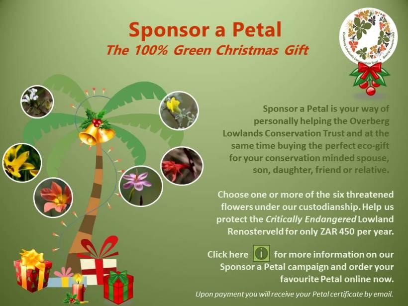 The 100% Green Christmas Gift
