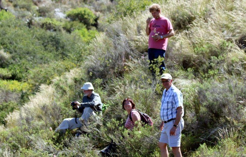 Notes on a Cape Town Botanist, Zoë Poulsen