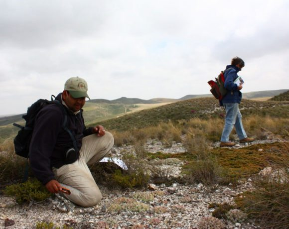 Land Restoration & Renosterveld Management Day
