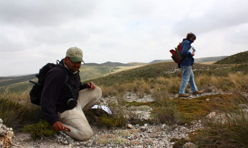 Land Restoration & Renosterveld Management Day