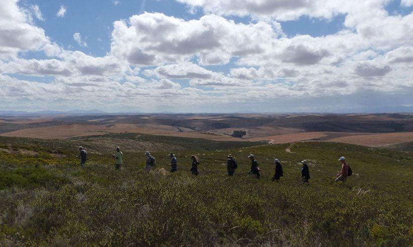 Renosterveld Restoration Workshop at  Bontebok NP: A Report
