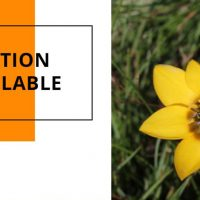 Ecologist / Extension Office needed for the Overberg Renosterveld Conservation Trust