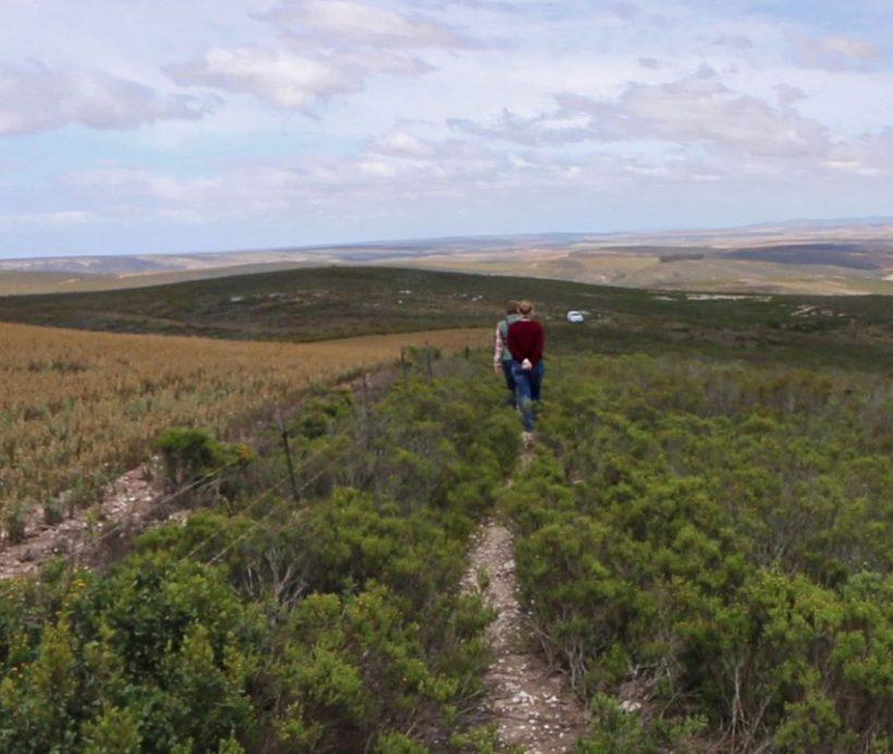 Take a hike on this interpreted walking trail