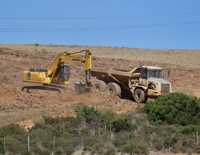 In plain sight: Illegal ploughing still threatens Overberg Renosterveld