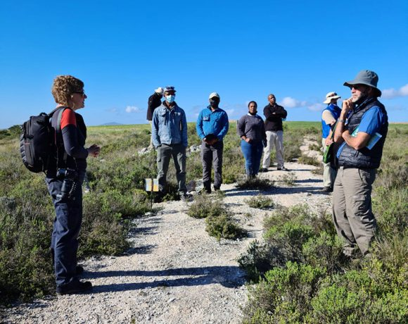 Building Extension Capacity in our Renosterveld Landscapes